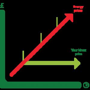 kinex price promise chart
